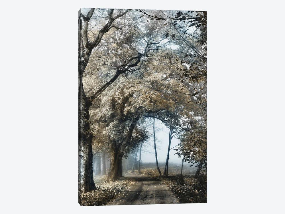 Road to Tomorrow by Lars van de Goor 1-piece Canvas Art Print
