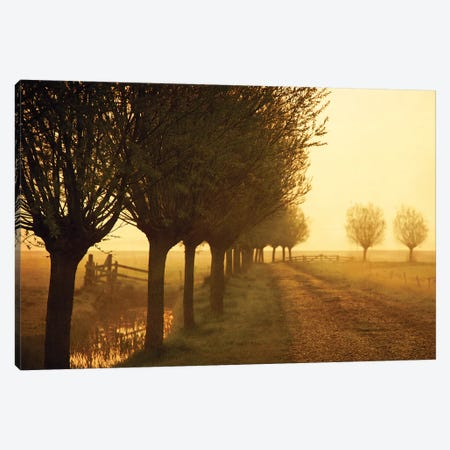 Misty Morning Reflection Canvas Print #LGR52} by Lars van de Goor Canvas Artwork