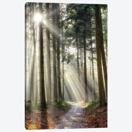Turning Left Can Be Right Canvas Print #LGR53} by Lars van de Goor Canvas Art