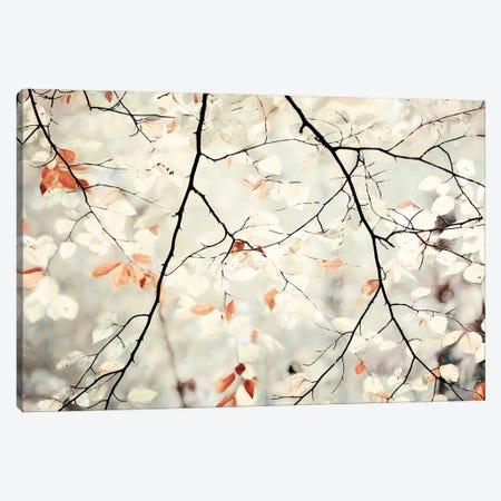 Simplicity Canvas Print #LGR57} by Lars van de Goor Art Print