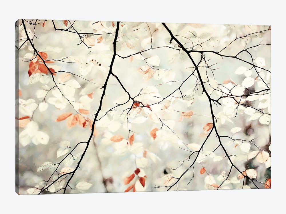 Simplicity by Lars van de Goor 1-piece Canvas Wall Art