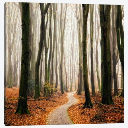 Winter Around The Corner Canvas Print #LGR5} by Lars van de Goor Canvas Art