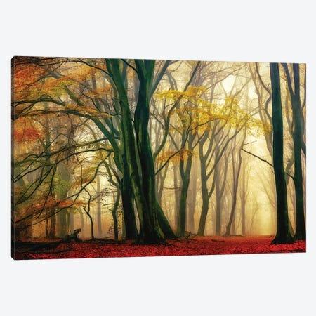 In Love with Fall Canvas Print #LGR61} by Lars van de Goor Canvas Art Print