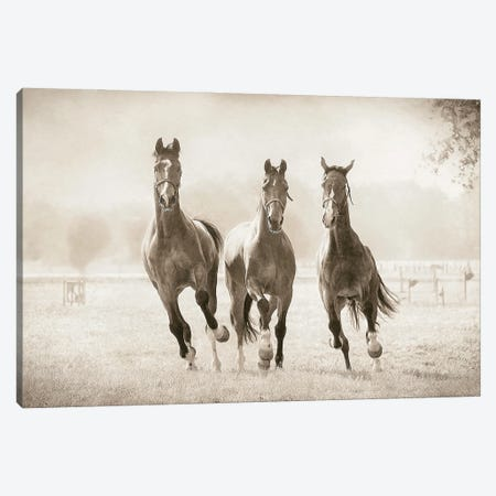 The Young Ones Canvas Print #LGR67} by Lars van de Goor Canvas Art