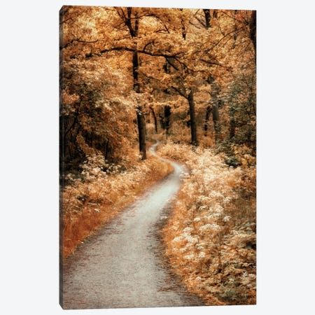 Winding Path Canvas Print #LGR6} by Lars van de Goor Canvas Wall Art