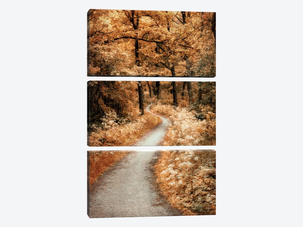 Winding Path by Lars van de Goor 3-piece Canvas Print