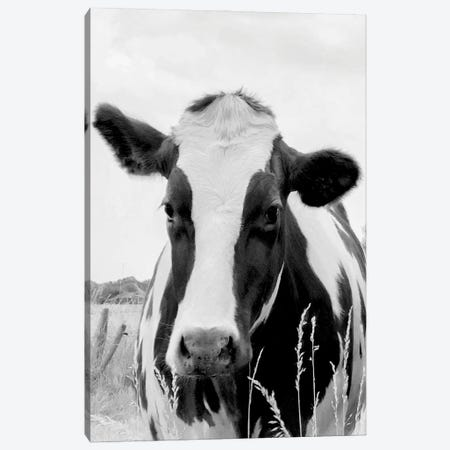 On the Pasture Canvas Print #LGR70} by Lars van de Goor Canvas Art