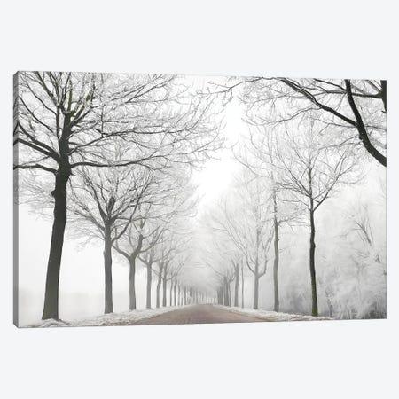 The Last Winter Canvas Print #LGR77} by Lars van de Goor Canvas Art Print