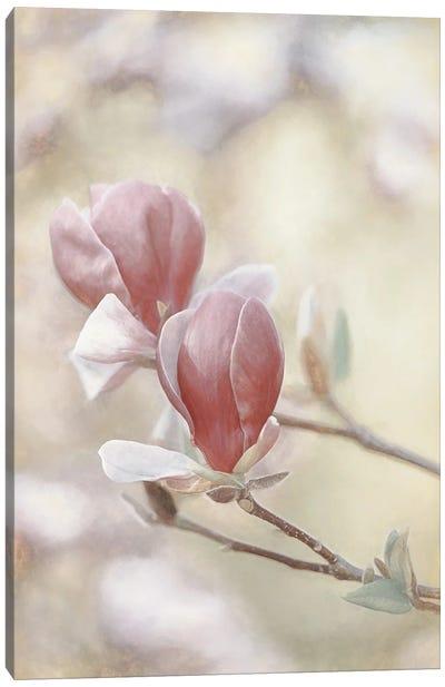 Blooming Hearts Canvas Art Print