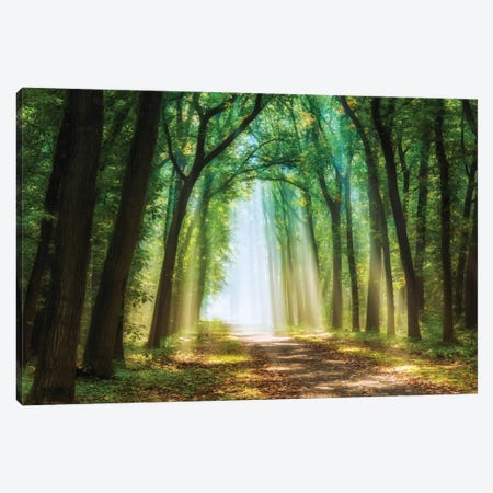 Curtain Of Light Canvas Print #LGR7} by Lars van de Goor Canvas Wall Art
