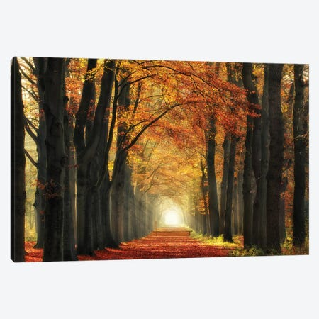 In Love With Fall Again Canvas Print #LGR8} by Lars van de Goor Canvas Print