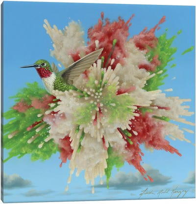 Hummingbird Explosion Canvas Art Print
