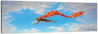 Super Fred Canvas Art Print