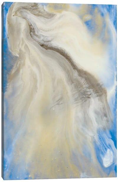 Oneness of All I Canvas Art Print