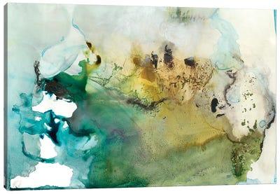 Organic Abstract Canvas Art Print