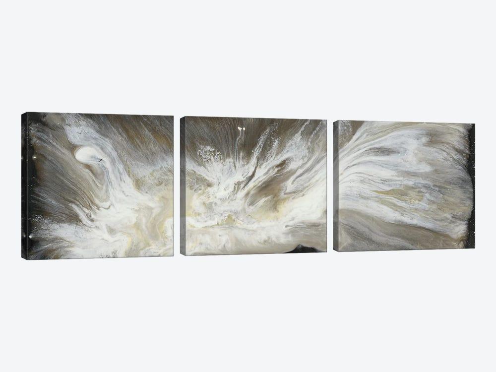 Transmutation VI by Lila Bramma 3-piece Canvas Art