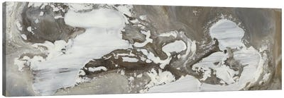Transmutation VII Canvas Art Print