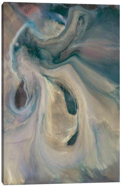 Mystery II Canvas Art Print