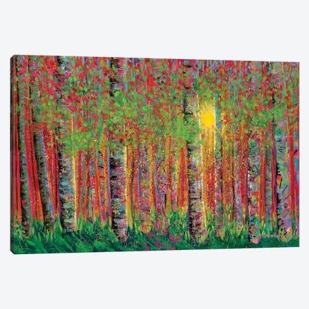 Sun Down Canvas Print #LIC36} by Lisa Concannon Art Print