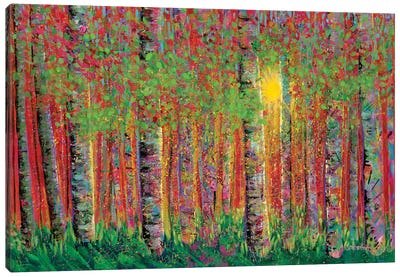 Sun Down Canvas Art Print
