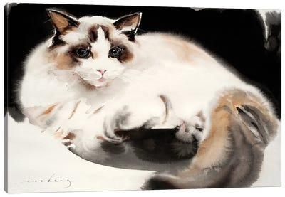 Cat Contentment Canvas Art Print