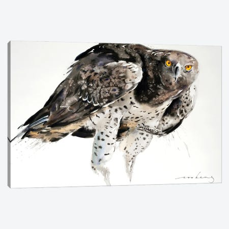 Eagle Power Canvas Print #LIM128} by Soo Beng Lim Art Print
