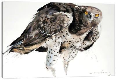 Eagle Power Canvas Art Print