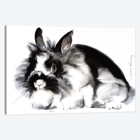 Rabbit Canvas Print #LIM140} by Soo Beng Lim Canvas Print