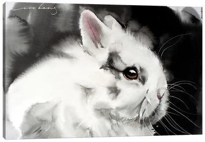 White Rabbit Canvas Art Print
