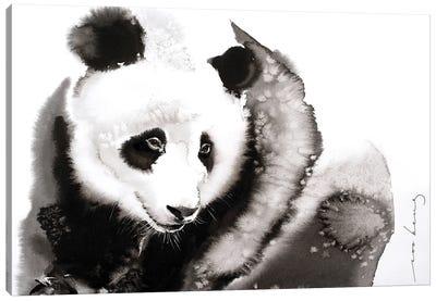 Cosy Panda II Canvas Art Print