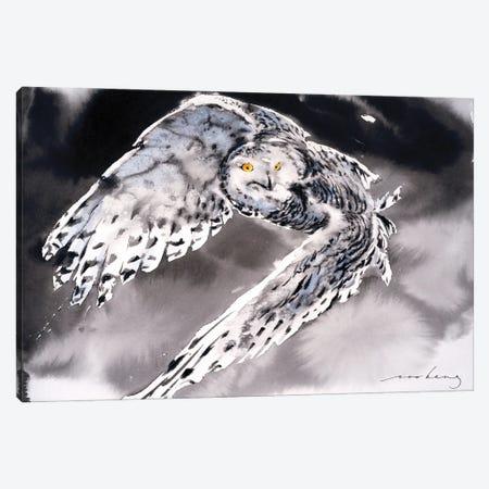 Snowy Owl II Canvas Print #LIM162} by Soo Beng Lim Art Print