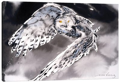 Snowy Owl II Canvas Art Print