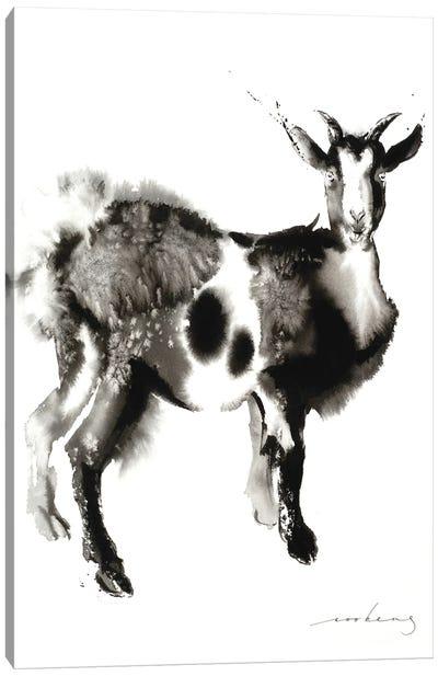 Goat Stance Canvas Art Print