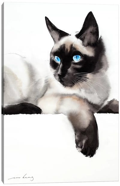 Cat Gaze Canvas Art Print