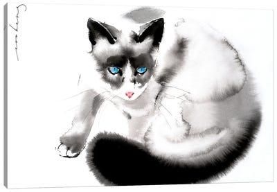 Cat Curiosity II Canvas Art Print