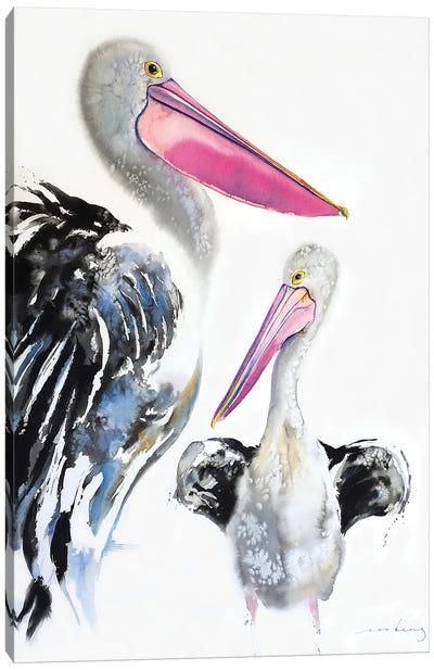 Pelican Majestic Canvas Art Print