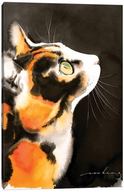 Night-Time Gazer Canvas Art Print