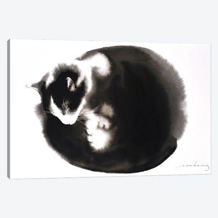 Kitty Ball Of Fur II Canvas Print #LIM185} by Soo Beng Lim Canvas Art