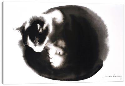 Kitty Ball Of Fur II Canvas Art Print