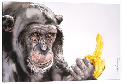 Banana Anyone? Canvas Art Print