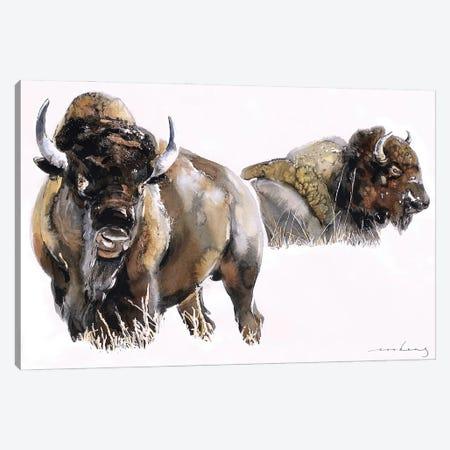 Bisons Canvas Print #LIM195} by Soo Beng Lim Canvas Art Print