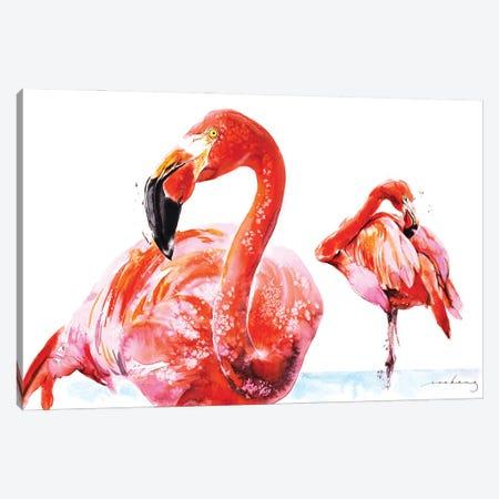 Flamenco Wader Canvas Print #LIM201} by Soo Beng Lim Canvas Art