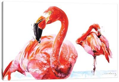 Flamenco Wader Canvas Art Print