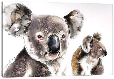 Koala Kinship Canvas Art Print