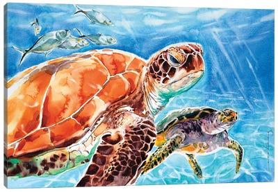 Leatherback Canvas Art Print