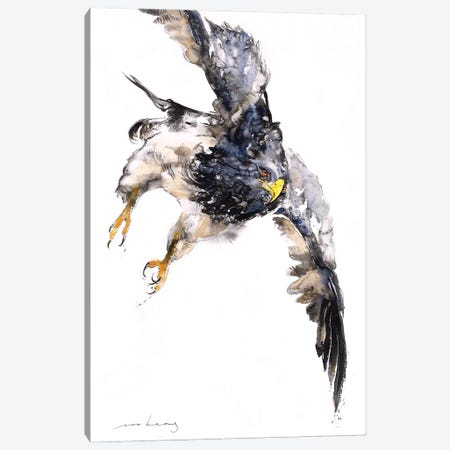 Soaring Above Canvas Print #LIM260} by Soo Beng Lim Canvas Wall Art