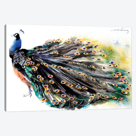 Peacock Splendour I Canvas Print #LIM79} by Soo Beng Lim Canvas Art
