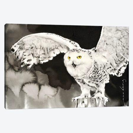 Snowy Owl Canvas Print #LIM90} by Soo Beng Lim Canvas Art