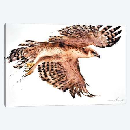 Soar like Eagle II Canvas Print #LIM91} by Soo Beng Lim Canvas Wall Art