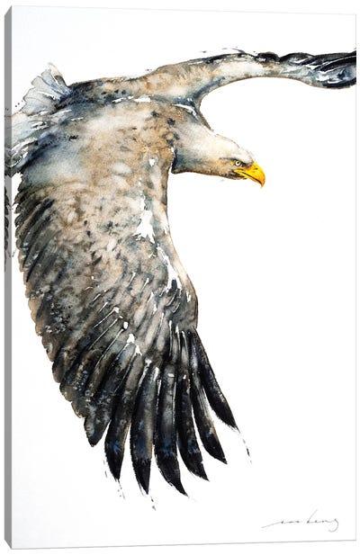 Soar Like Eagle IV Canvas Art Print